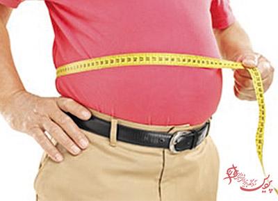 Fatty-abdominal